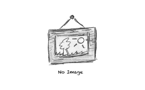 Post with custom slideshow
